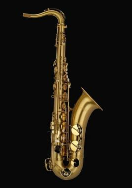 Schagerl T900ML  ACADEMICA Sax Tenore
